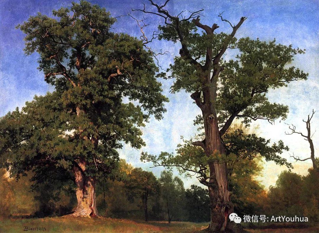 哈德逊河派 美国画家Albert Bierstadt插图43