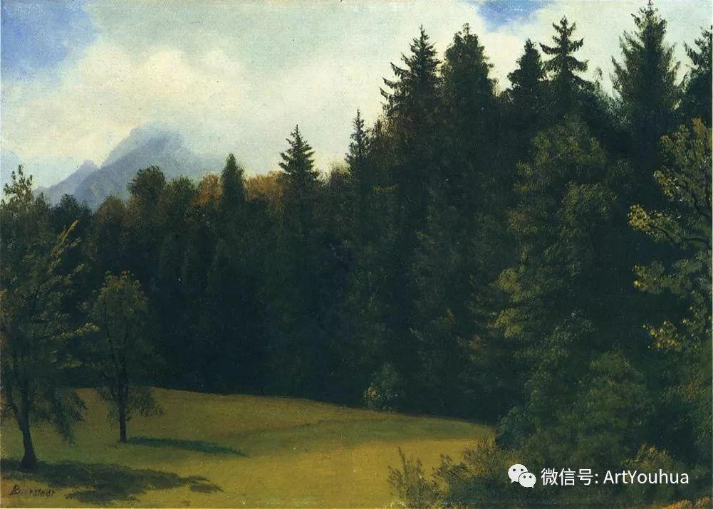 哈德逊河派 美国画家Albert Bierstadt插图71