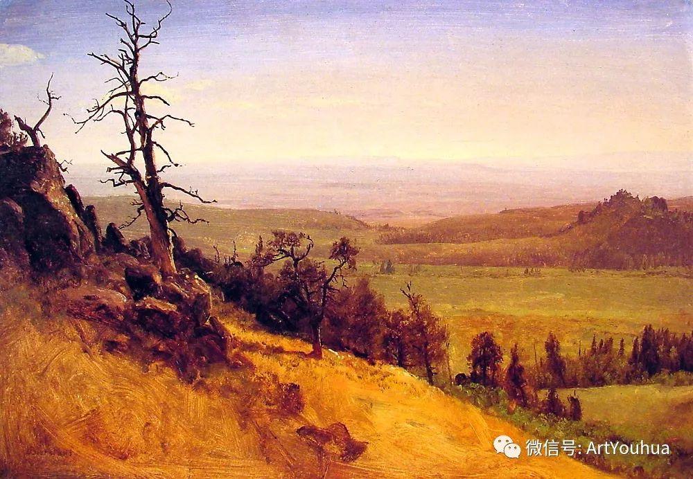 哈德逊河派 美国画家Albert Bierstadt插图75