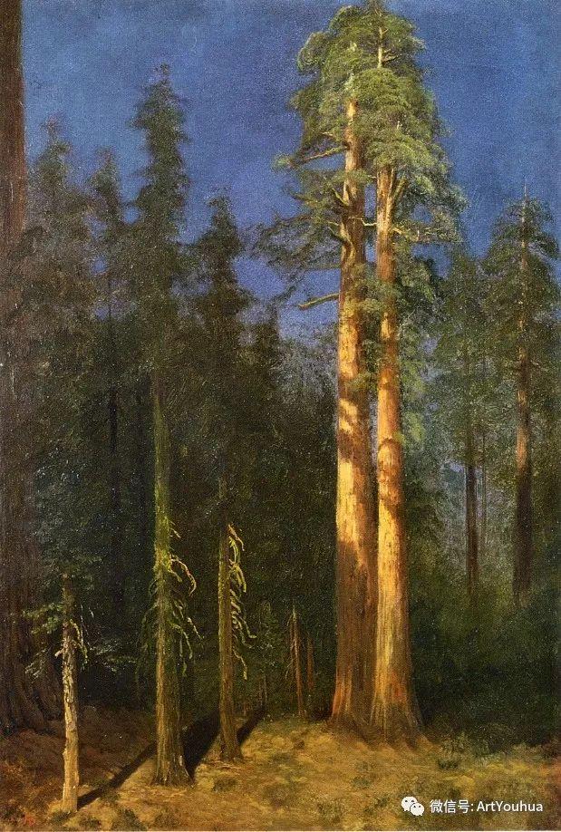 哈德逊河派 美国画家Albert Bierstadt插图85