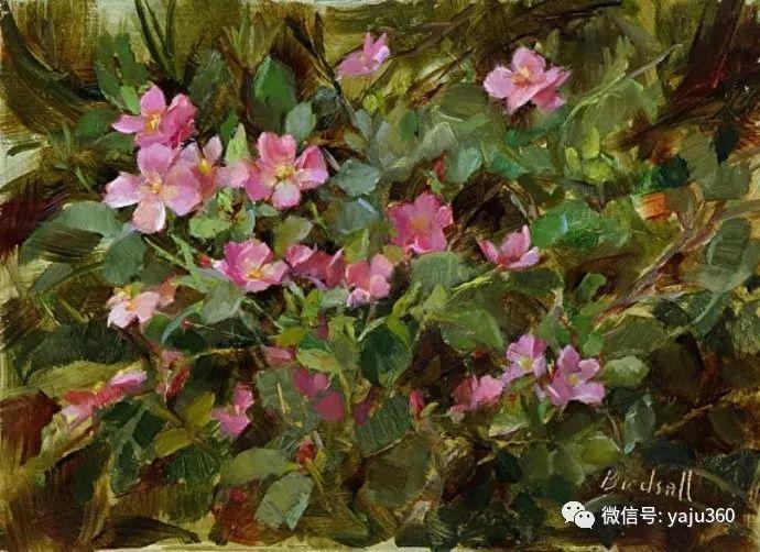 花卉绘画 Stephanie Birdsall作品欣赏插图25