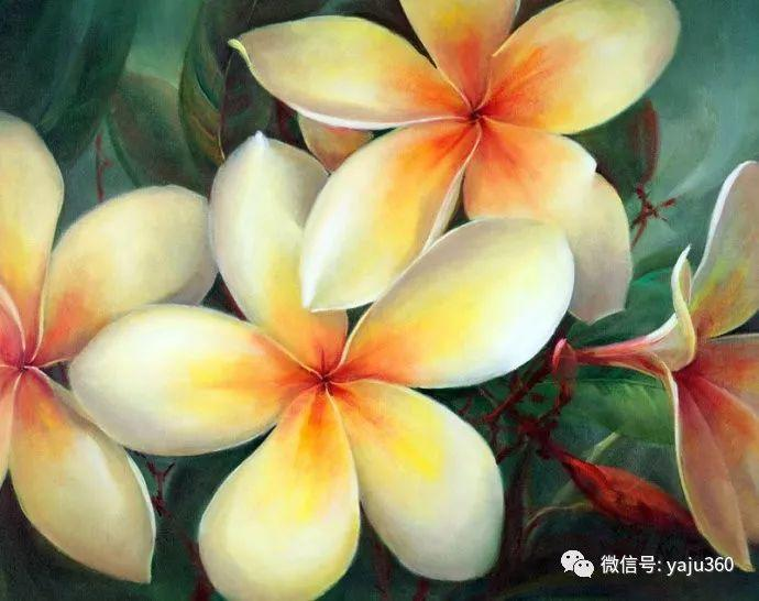 花卉魅力 澳大利亚Jill Kirstein插图16