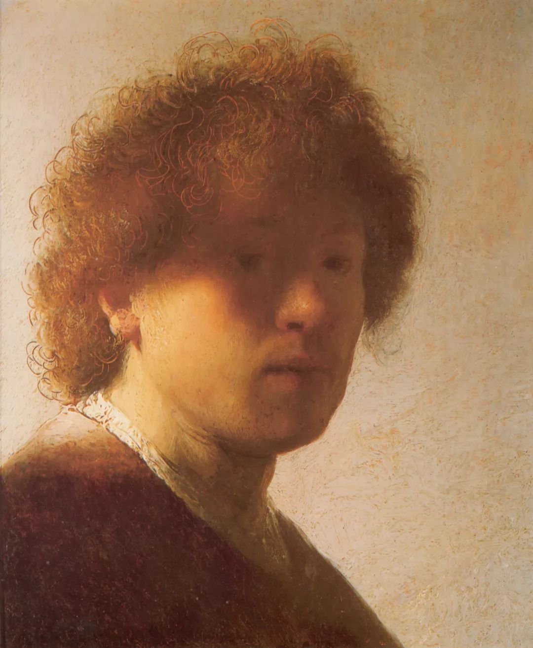 伦勃朗·梵·莱茵 17世纪荷兰最伟大的画家插图43