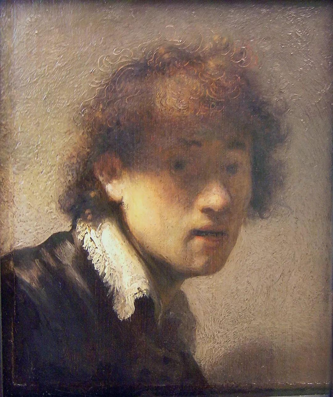 伦勃朗·梵·莱茵 17世纪荷兰最伟大的画家插图47