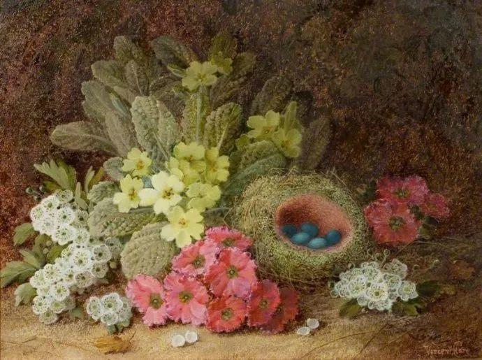 静物花卉油画欣赏 英国文森特·克莱尔插图9