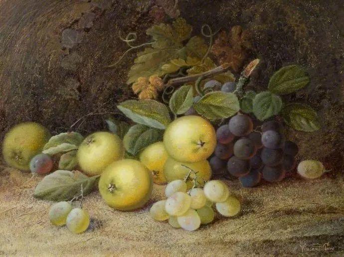 静物花卉油画欣赏 英国文森特·克莱尔插图11