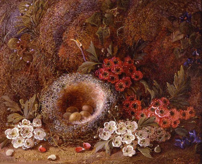 静物花卉油画欣赏 英国文森特·克莱尔插图27