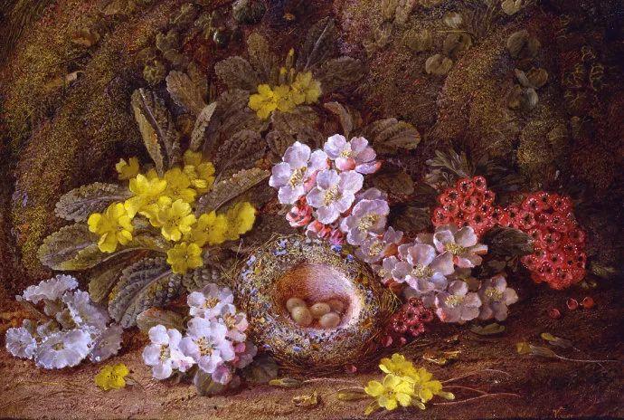 静物花卉油画欣赏 英国文森特·克莱尔插图33