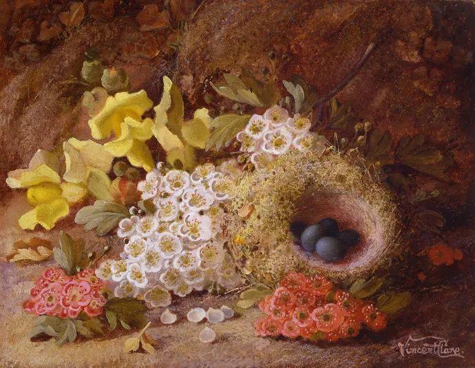 静物花卉油画欣赏 英国文森特·克莱尔插图41