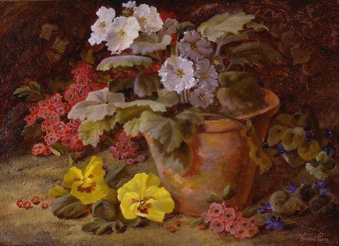 静物花卉油画欣赏 英国文森特·克莱尔插图45