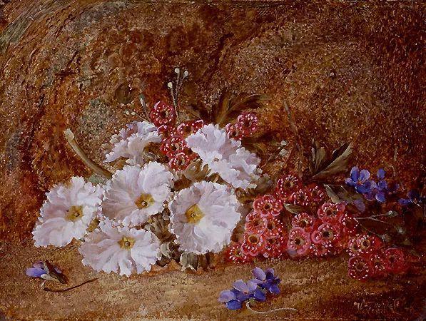 静物花卉油画欣赏 英国文森特·克莱尔插图47