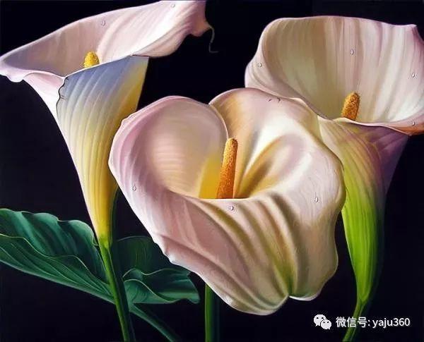 超写实的花卉和水果绘画作品插图