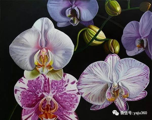 超写实的花卉和水果绘画作品插图6