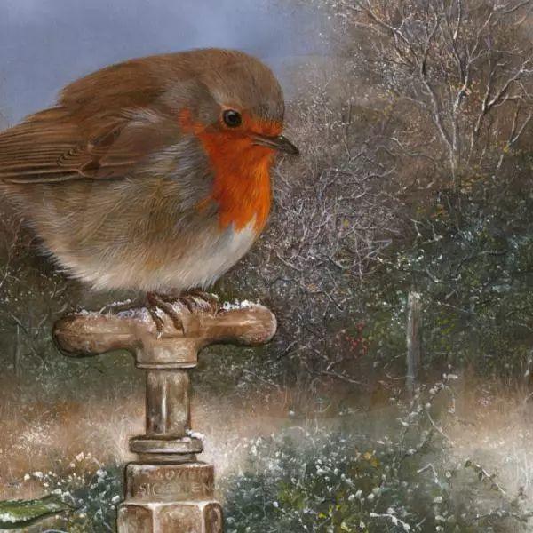 动物绘画 Carl Whitfield作品插图11