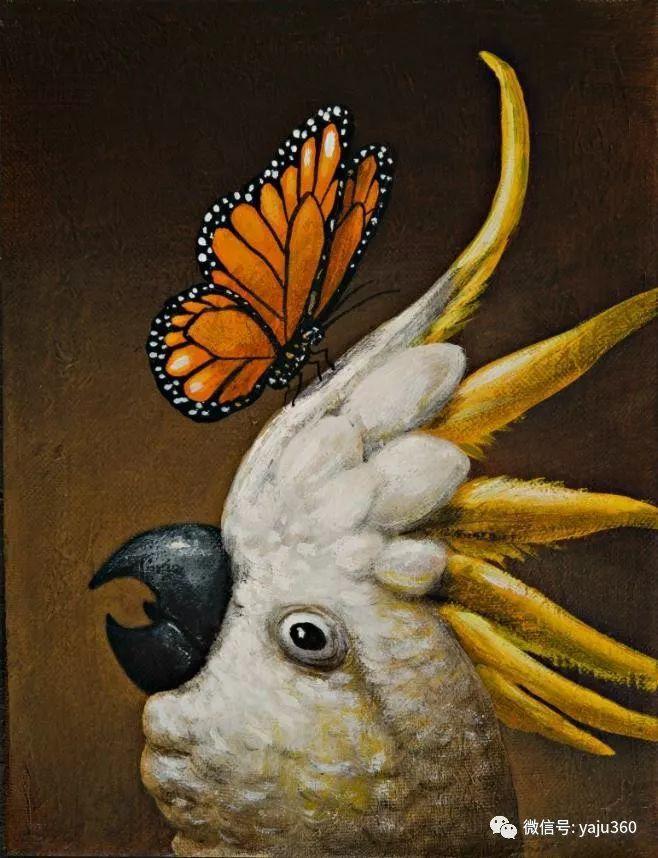 野生动物大集合插图9