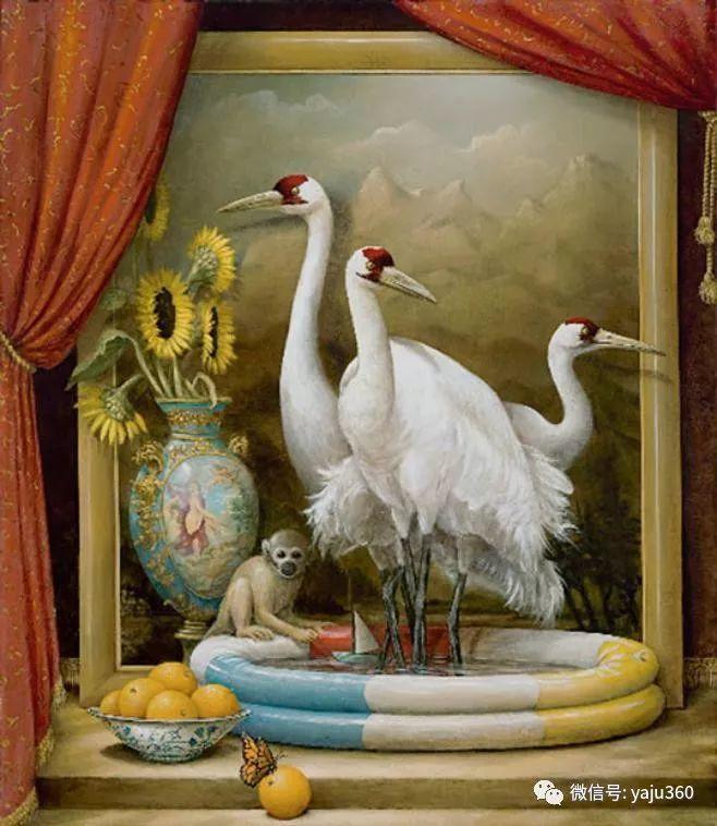 野生动物大集合插图49