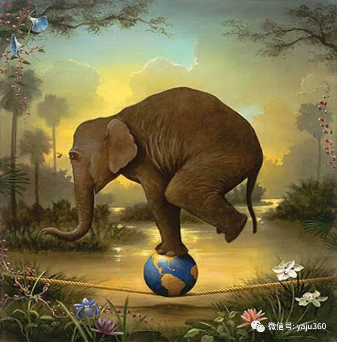野生动物大集合插图121
