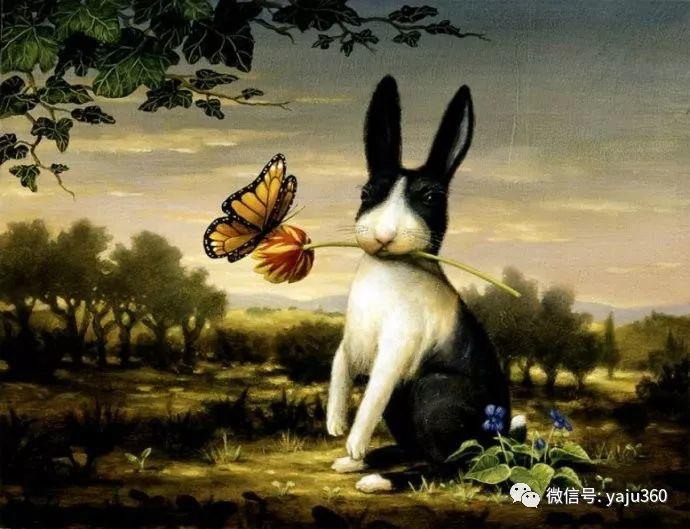 野生动物大集合插图135