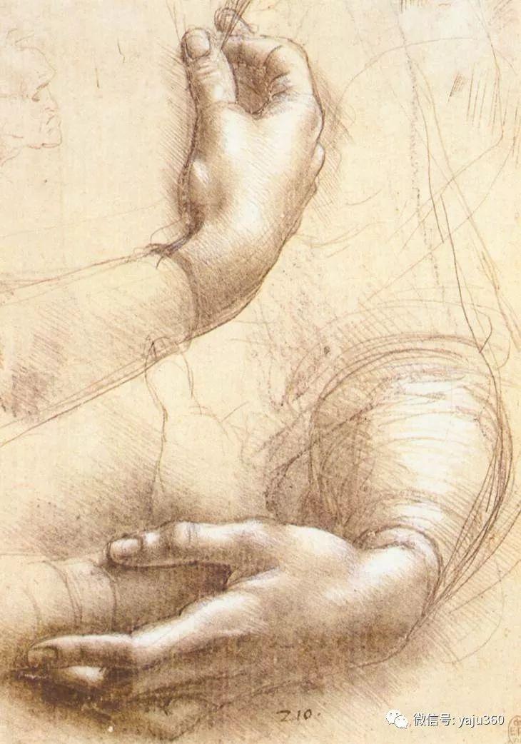世界著名画家之达芬奇插图21