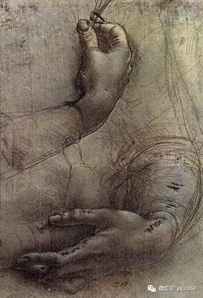 世界著名画家之达芬奇插图23