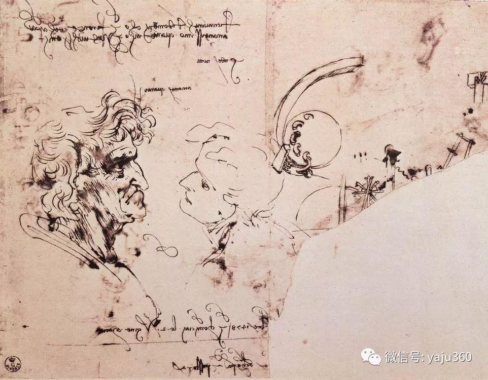 世界著名画家之达芬奇插图43