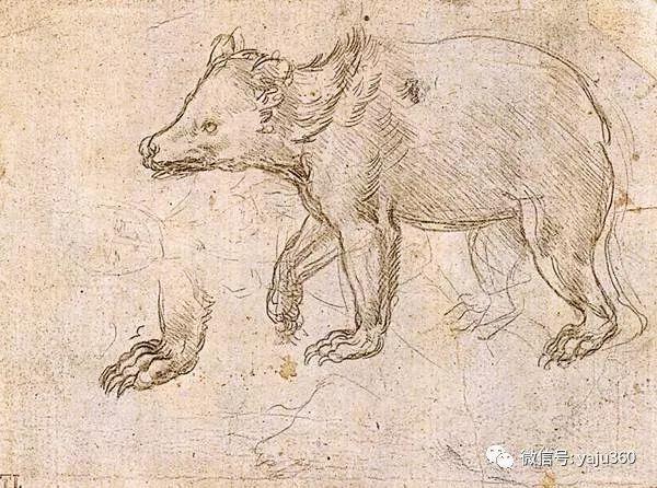 世界著名画家之达芬奇插图91