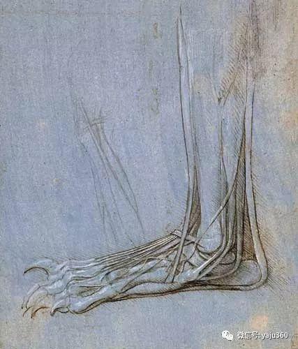 世界著名画家之达芬奇插图101