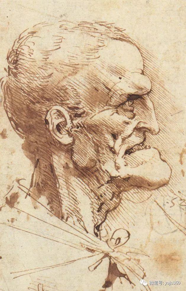 世界著名画家之达芬奇插图113