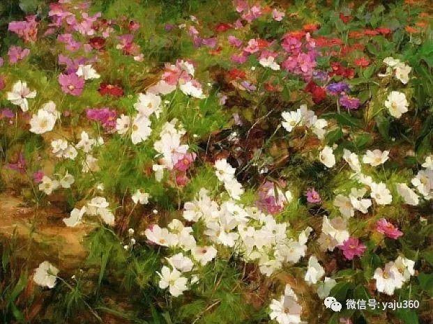 花团锦簇插图19