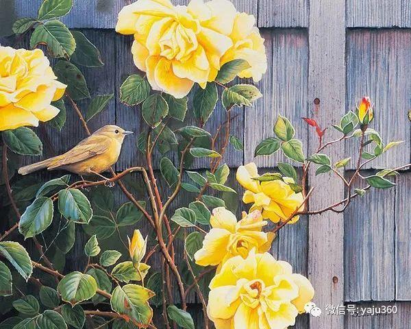 Susan Bourdet花鸟绘画插图9