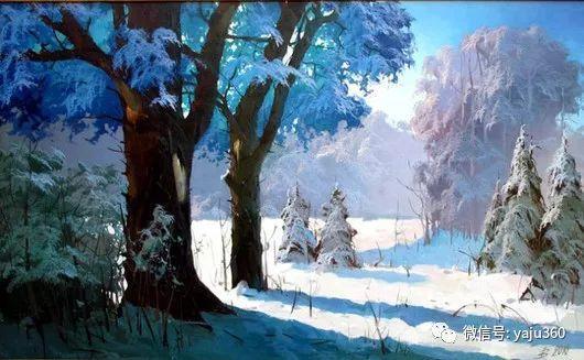 绚丽的雪景插图1