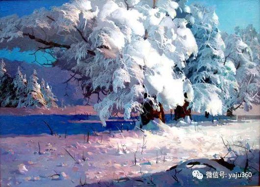 绚丽的雪景插图3