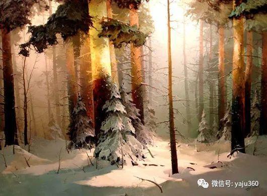 绚丽的雪景插图7