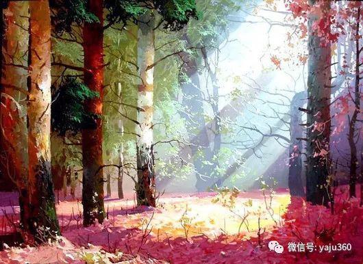 绚丽的雪景插图9