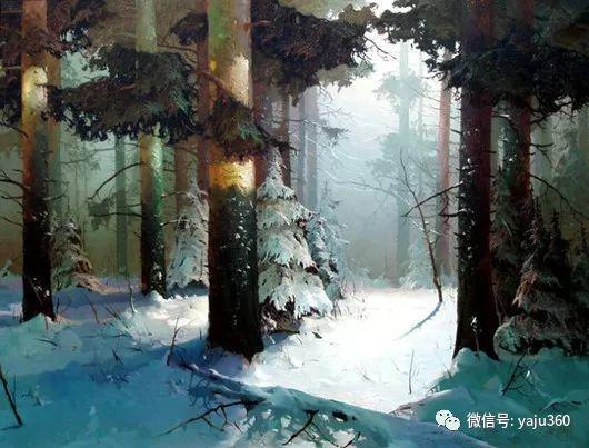 绚丽的雪景插图19