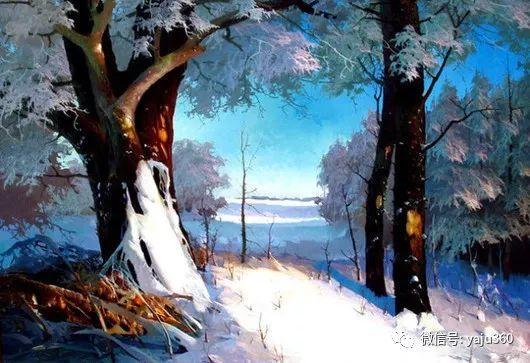 绚丽的雪景插图23