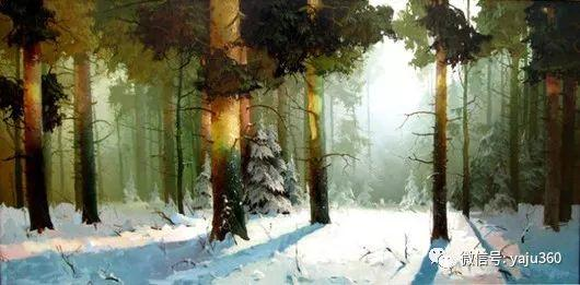 绚丽的雪景插图25