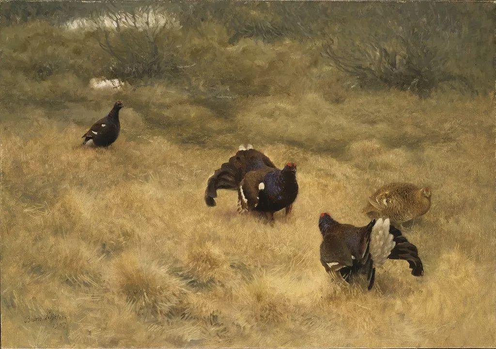 著名野生动物画家,瑞典Bruno Liljefors插图34