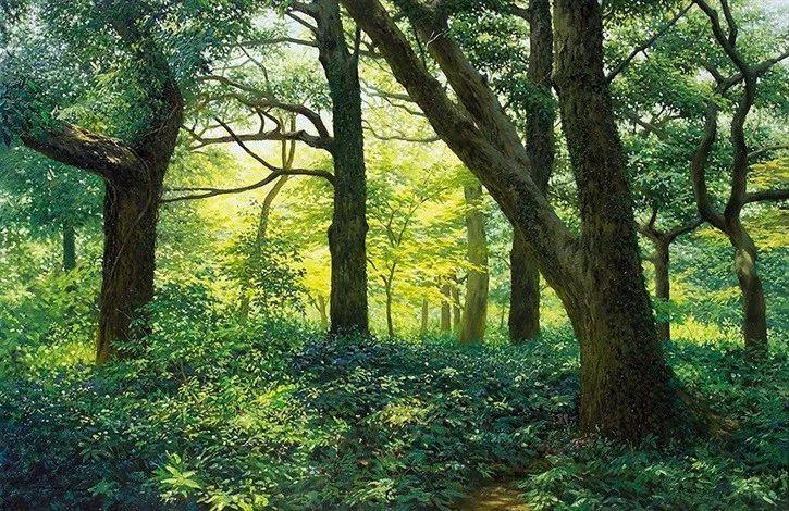 他沉迷于画树林,超逼真,看了让人身临其境!插图