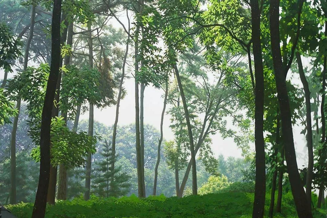他沉迷于画树林,超逼真,看了让人身临其境!插图17