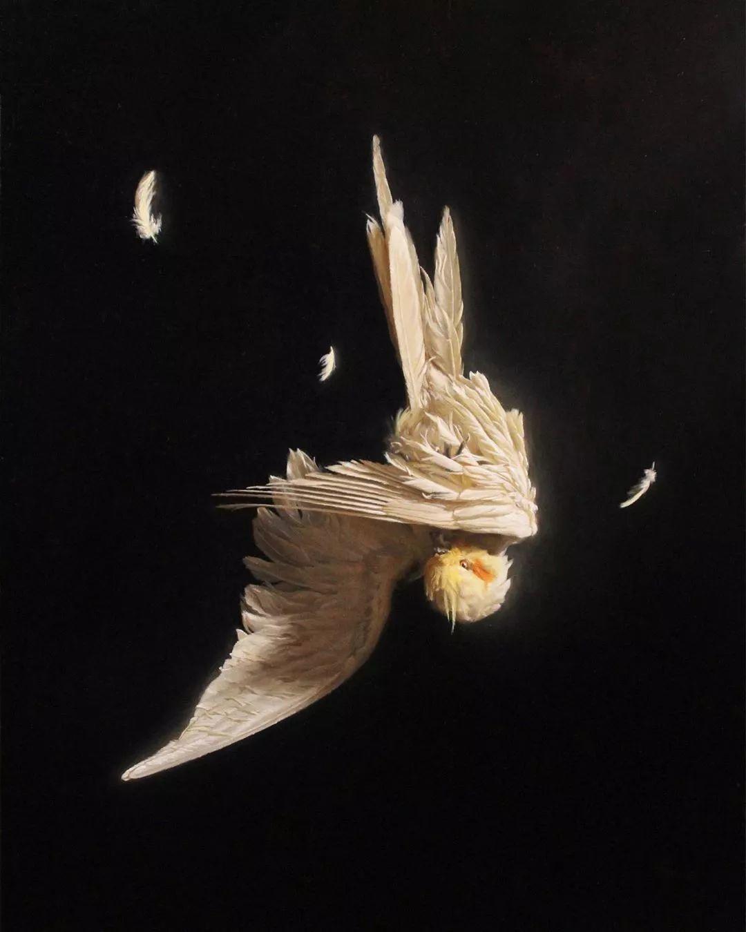 静物花卉 | 美国90后画家Grant Perry作品欣赏插图43