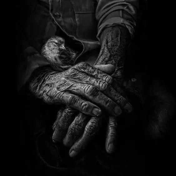 手是人的第二张脸,承载着人奋斗一生的痕迹插图5