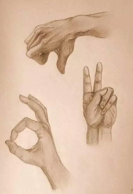 手是人的第二张脸,承载着人奋斗一生的痕迹插图68