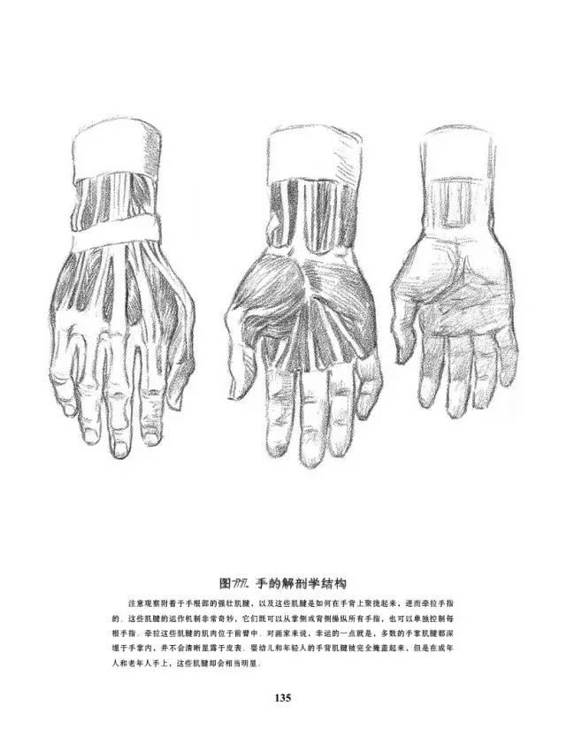 手是人的第二张脸,承载着人奋斗一生的痕迹插图76