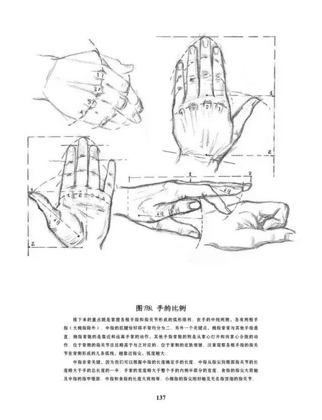 手是人的第二张脸,承载着人奋斗一生的痕迹插图78