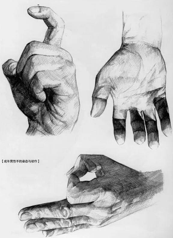 手是人的第二张脸,承载着人奋斗一生的痕迹插图101