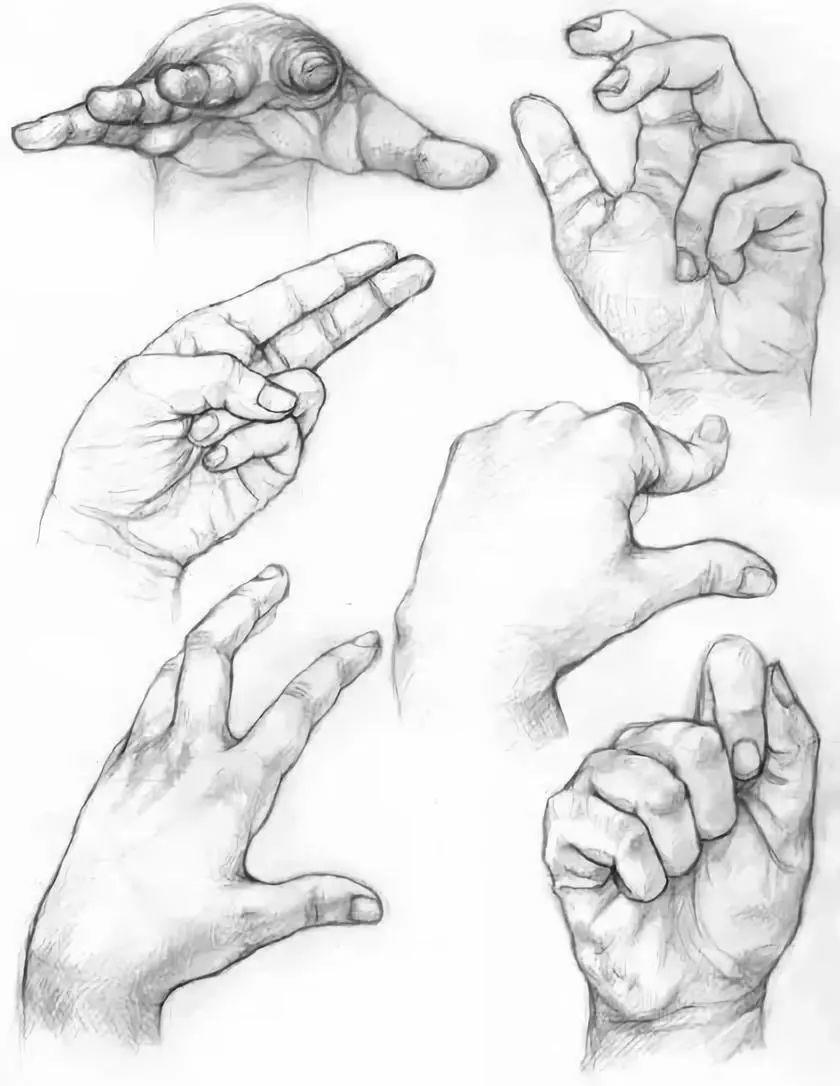 手是人的第二张脸,承载着人奋斗一生的痕迹插图128