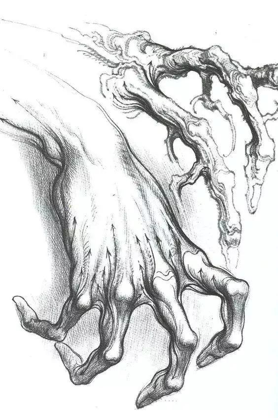 手是人的第二张脸,承载着人奋斗一生的痕迹插图132