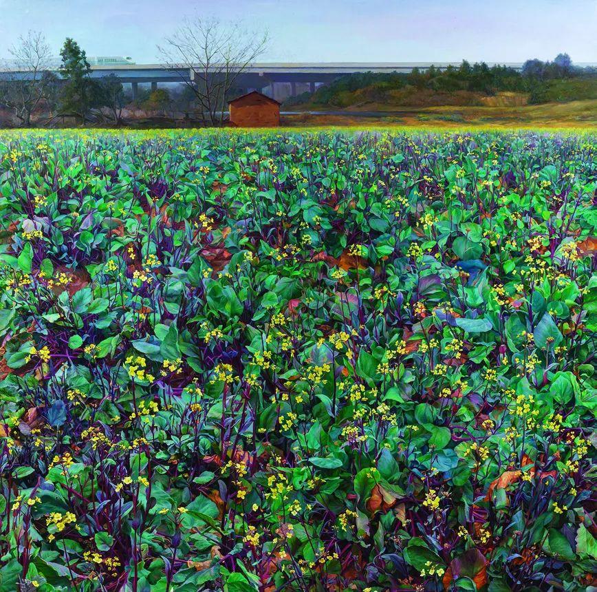 第十三届全国美展油画作品展全集595幅 (上)插图175