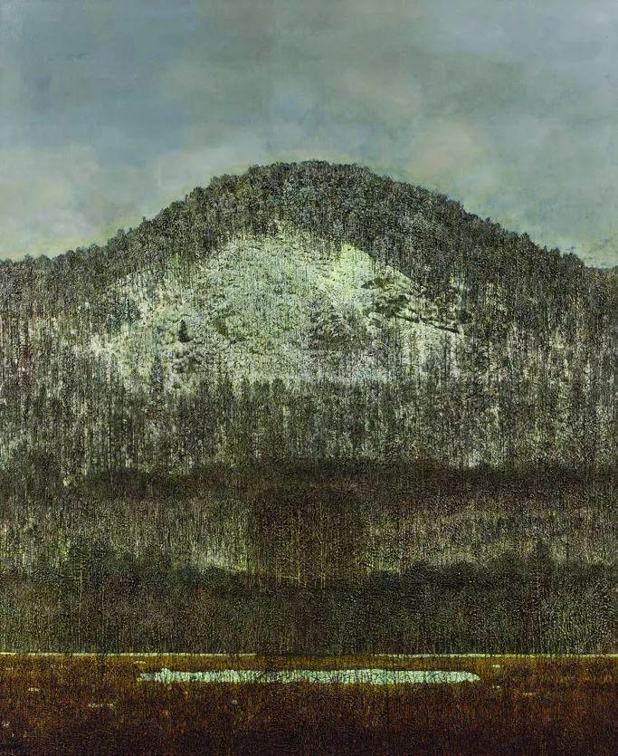 第十三届全国美展油画作品展全集595幅 (上)插图250